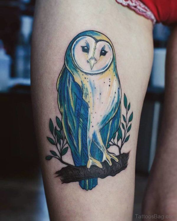 Amazing Barn Owl Tattoo