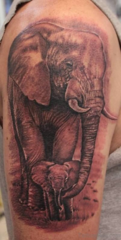 Amazing Elephant Tattoo