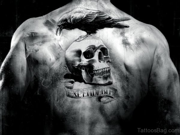 Bird And Skull Tattoo