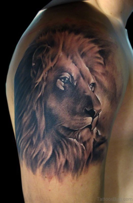 Calm Lion Shoulder Tattoo