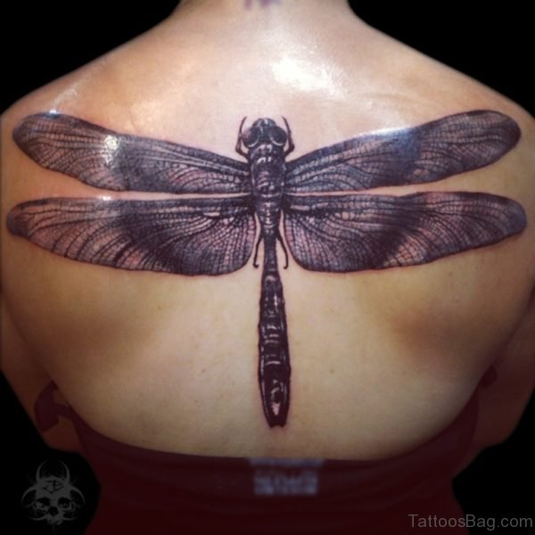 Classic Dragonfly Tattoo On Back