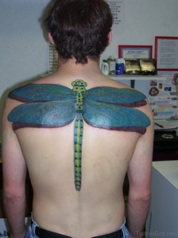 Colored Dragonfly Tattoo On Back