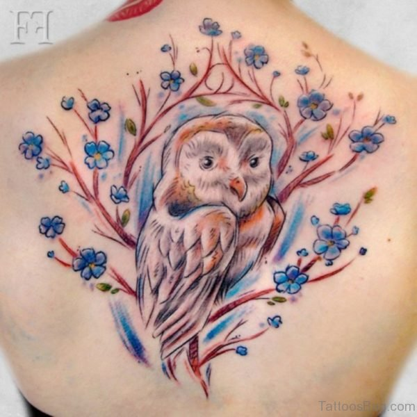 Colorful Owl Tattoo On Back