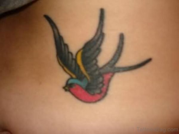 Colorful Bird Tattoo On Back