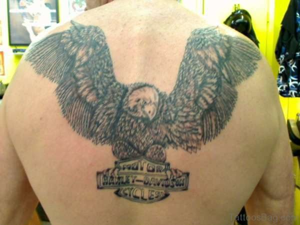 Elegant Eagle Tattoo