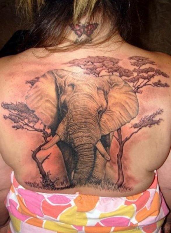 Elephant And Tree Tattoo