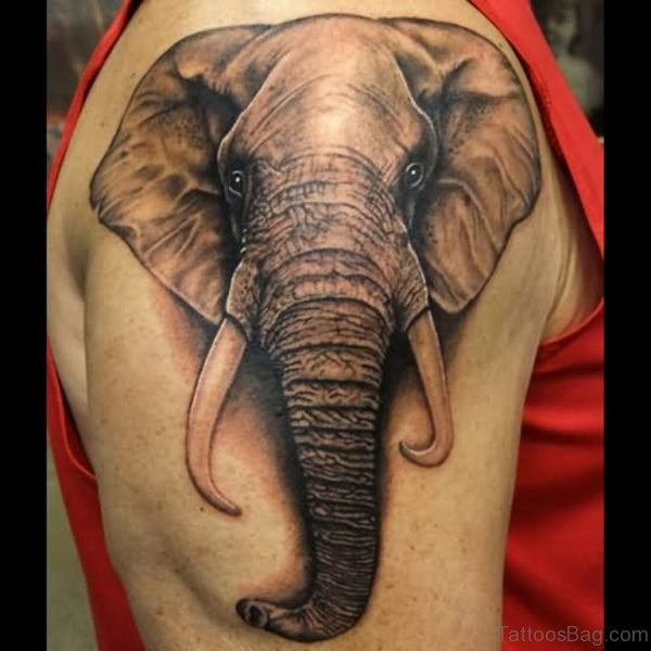 Elephant Face On Right Shoulder