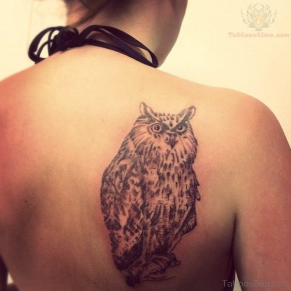 Fantastic Owl Tattoo On Back