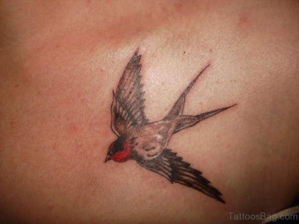 Good Looking  Swallow Tattoo