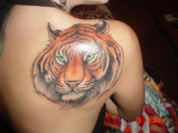 Gorgeous Tiger Tattoo