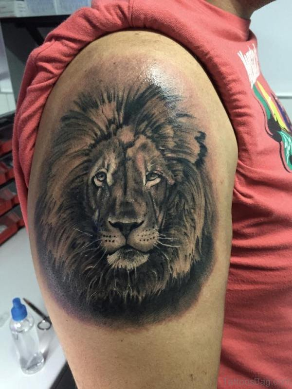 Grey Ink  Lion Tattoo On Shoulder