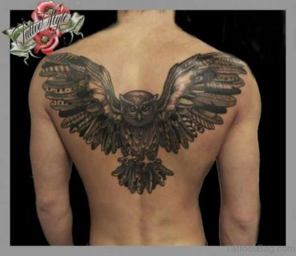 Grey Owl Tattoo Design On Back