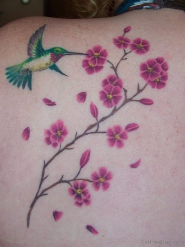 Hummingbird And Cheery Blossom Tattoo