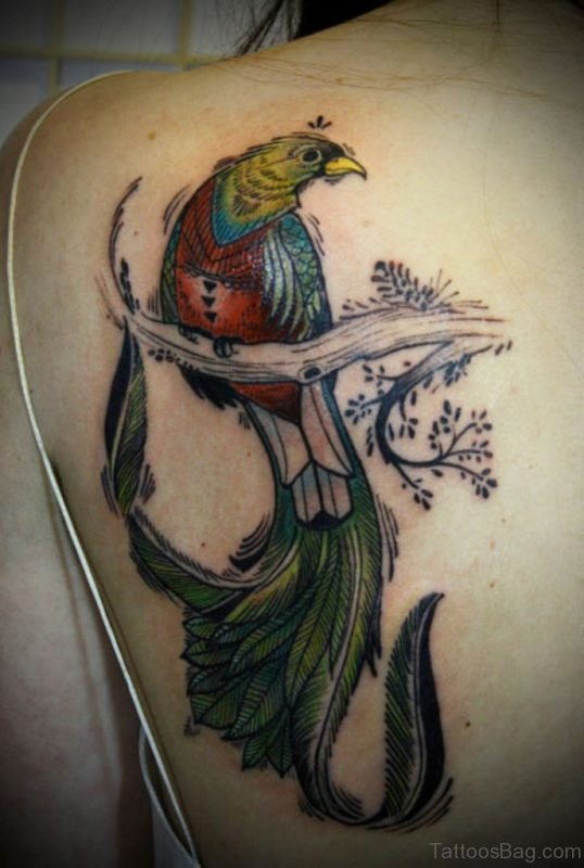 Impressive Bird Tattoo