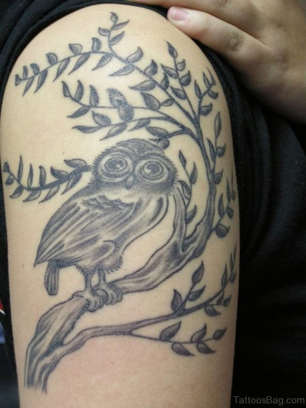 Leaves And Owl Tattoo