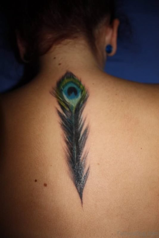 Lovely Peacock Feather Tattoo