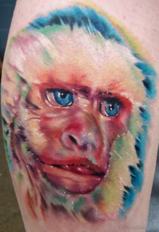 Nice Colorful Monkey Shoulder Tattoo