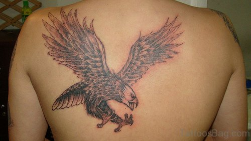 Nice Eagle Tattoo Design