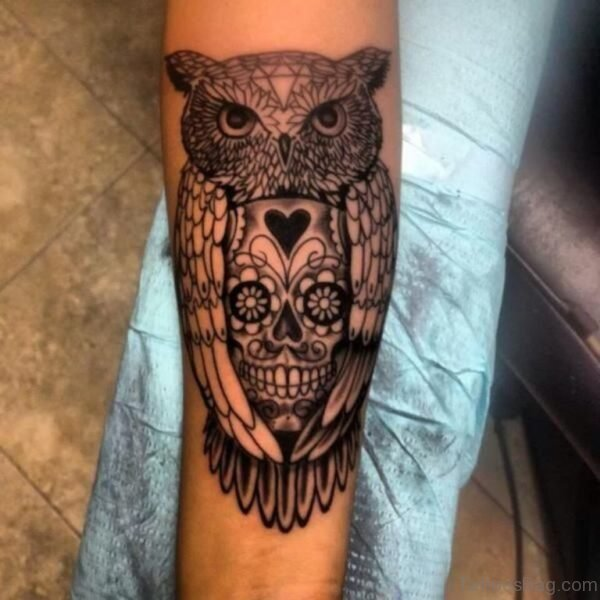 Nice Owl And Skull Tattoo