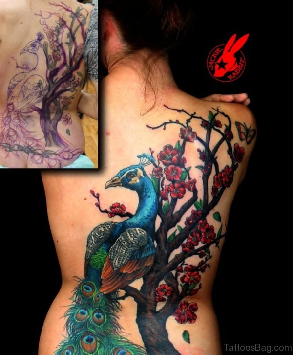 Peacock And Cherry Blossom  tattoo On Back