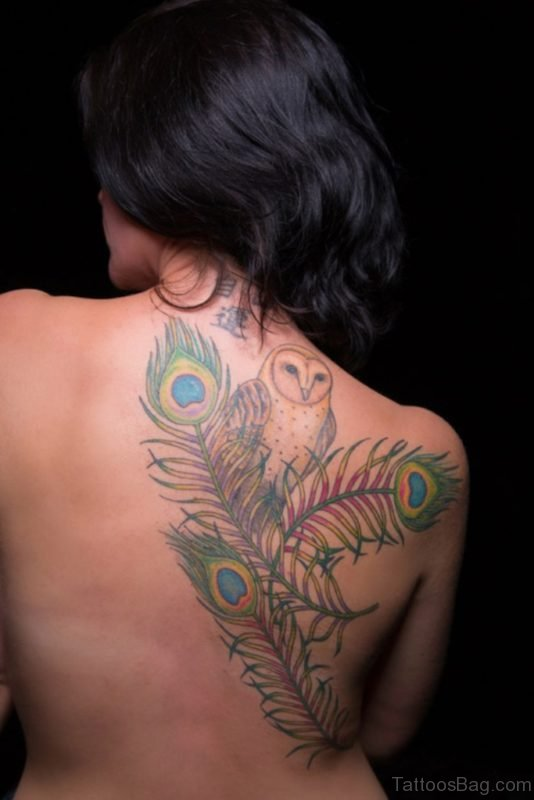 Peacock Feather And Owl Tattoo