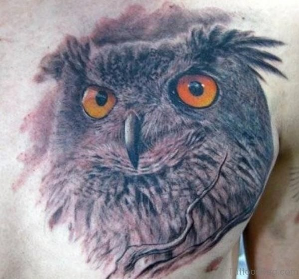 Realistic Owl Tattoo On Chest