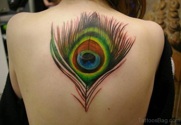 Stunning Colorful Feather Tattoo