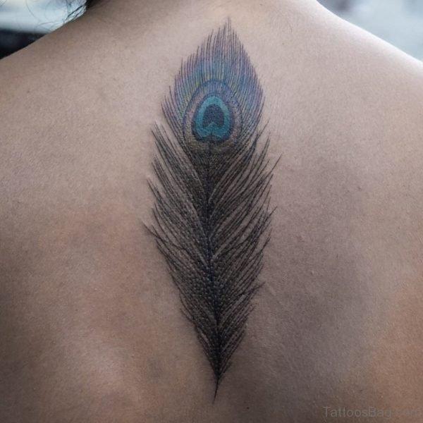 Stunning Peacock Feather Tattoo on Back