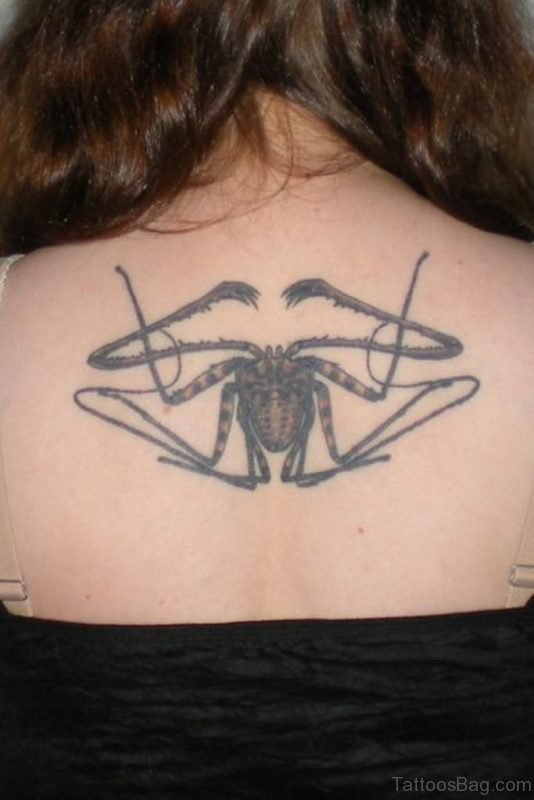 Stylish Spider Tattoo