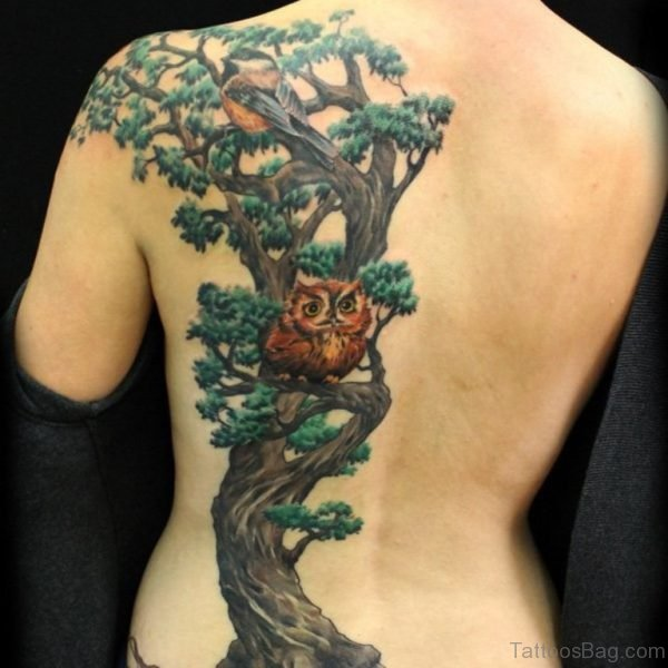 Tree And Owl Tattoo On Back
