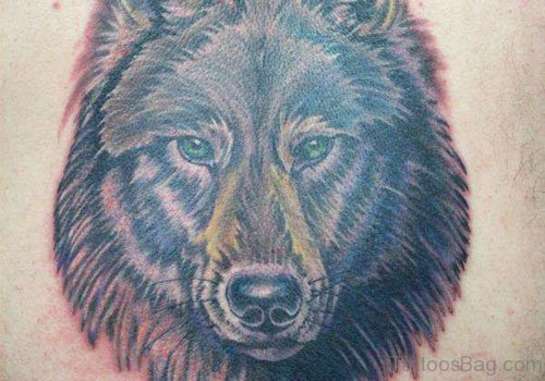 Wolf Tattoo Picture