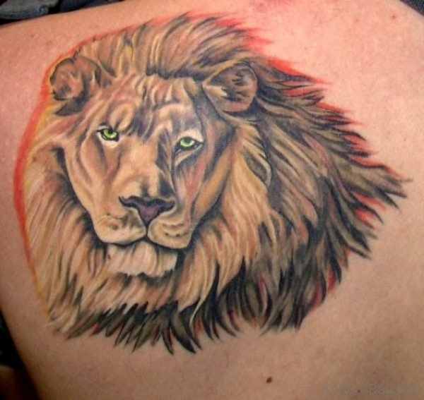 Wonderful Lion Tattoo On Shoulder Back