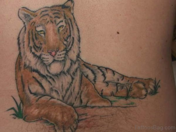 Wonderful Tiger Tattoo