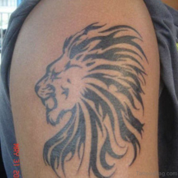 Wonderful Tribal Lion Tattoo Design