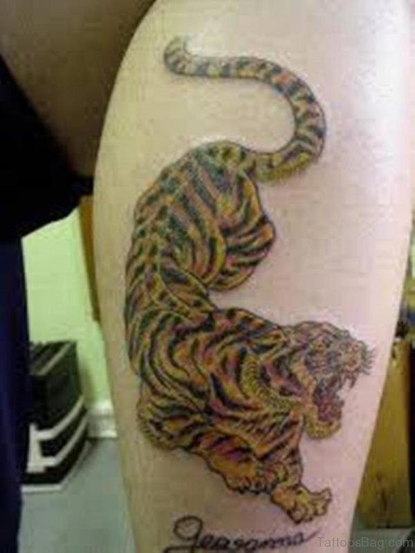 Angry Tiger Leg Tattoo Design