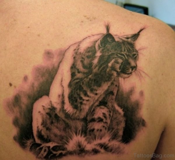 Cute Lynx At Shoulder Blade