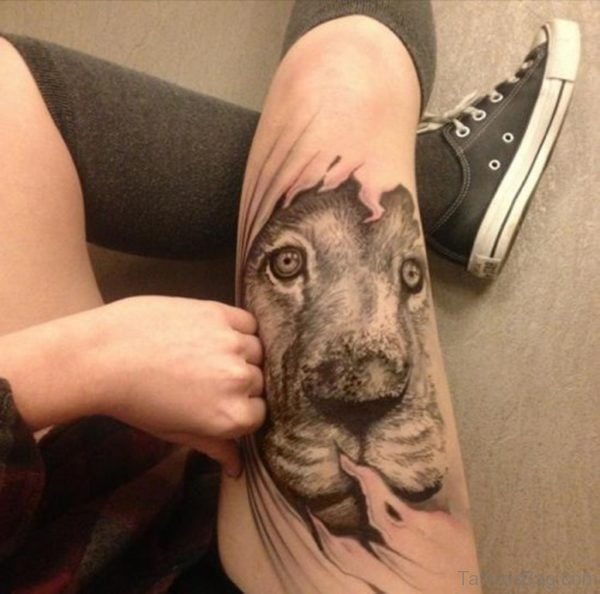 Great Looking Lion Tattoo