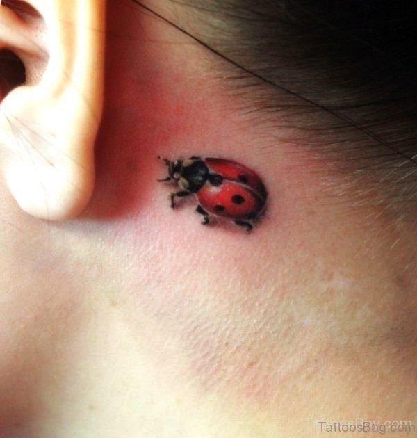 Ladybug Tattoo On Behind Ear