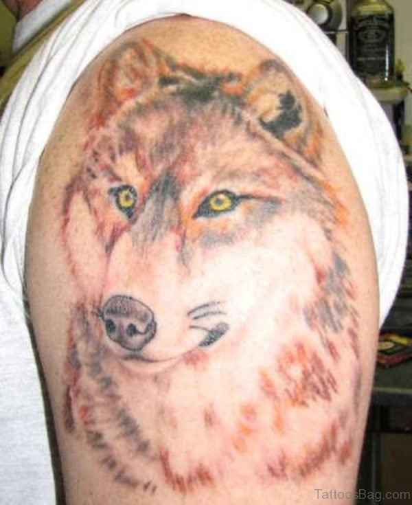 Lovely Wolf Tattoo On Shoulder