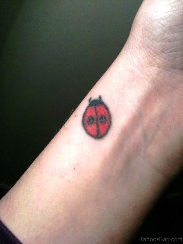 Nice Ladybug Tattoo On Wrist
