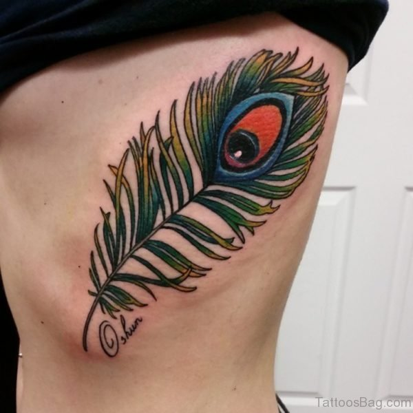 Nice Peacock Feather Tattoo Design
