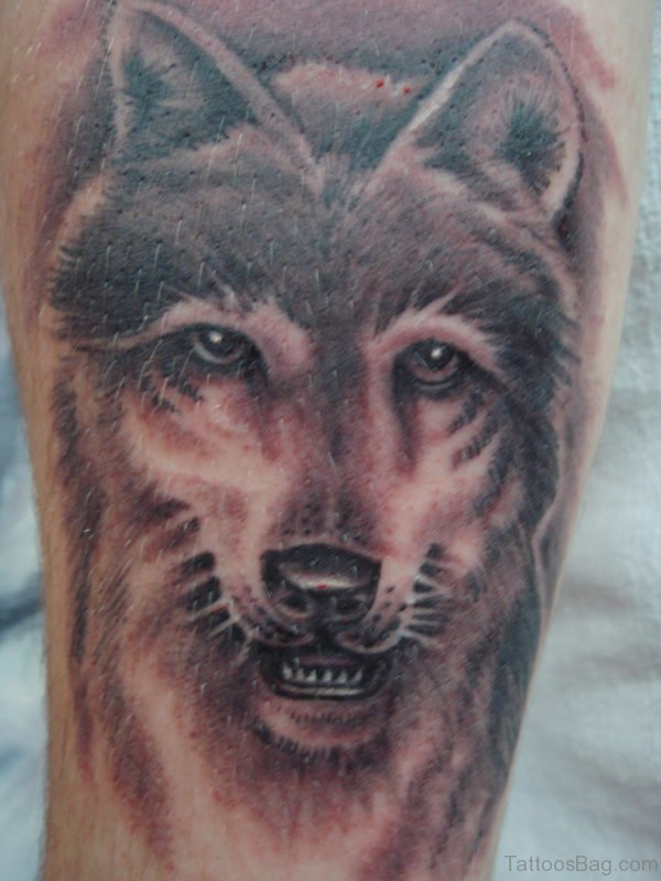 Outstanding Wolf Tattoo