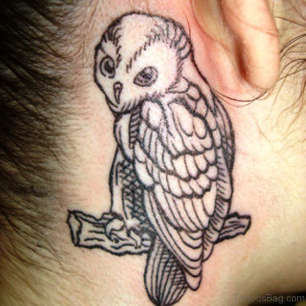 Owl Sitting On Branch Tattoo