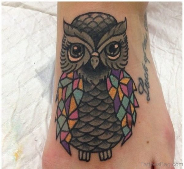 Owl With Color Wings
