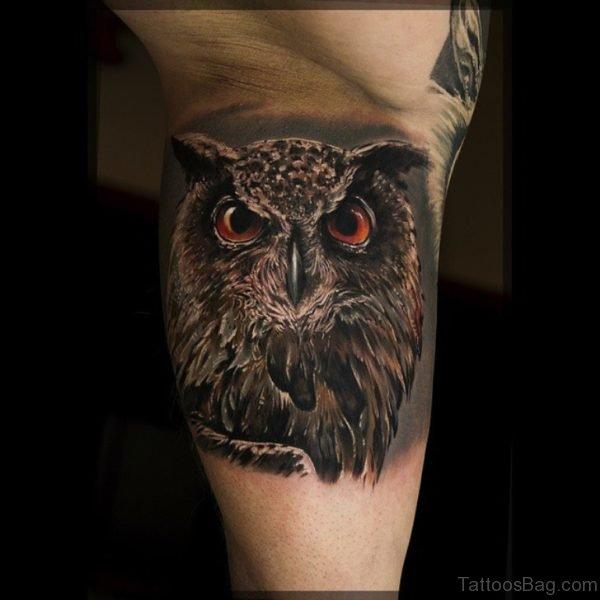 Realistic Owl Tattoo On Leg