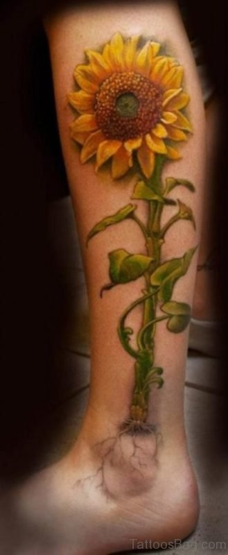 Realistic Sunflower Tattoo For Leg