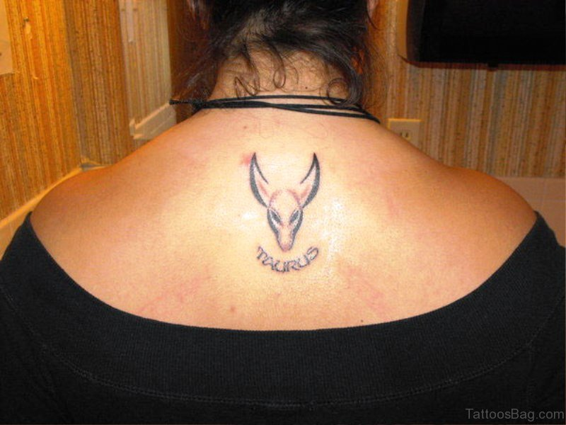 71 Unique Bull Tattoos On Back