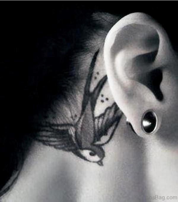 Swallow Bird Tattoo Behind Ear