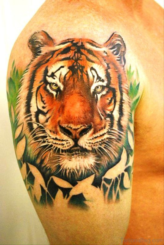 44 tremendous tiger tattoos on shoulder for Tiger tattoo face
