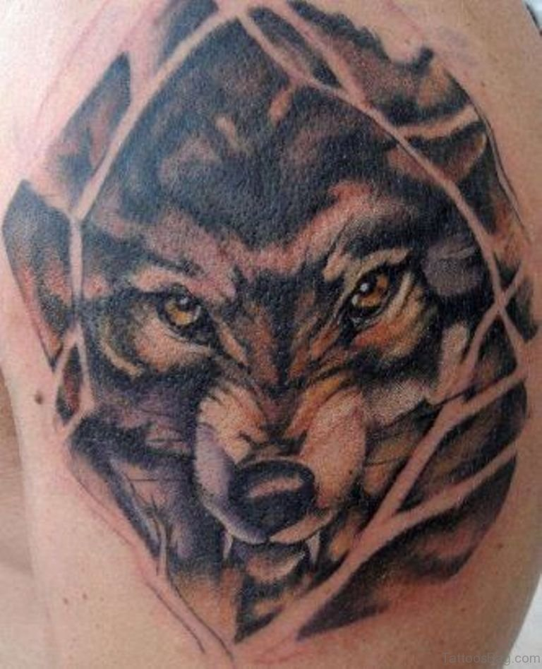 51 elegant wolf tattoos on shoulder. Black Bedroom Furniture Sets. Home Design Ideas